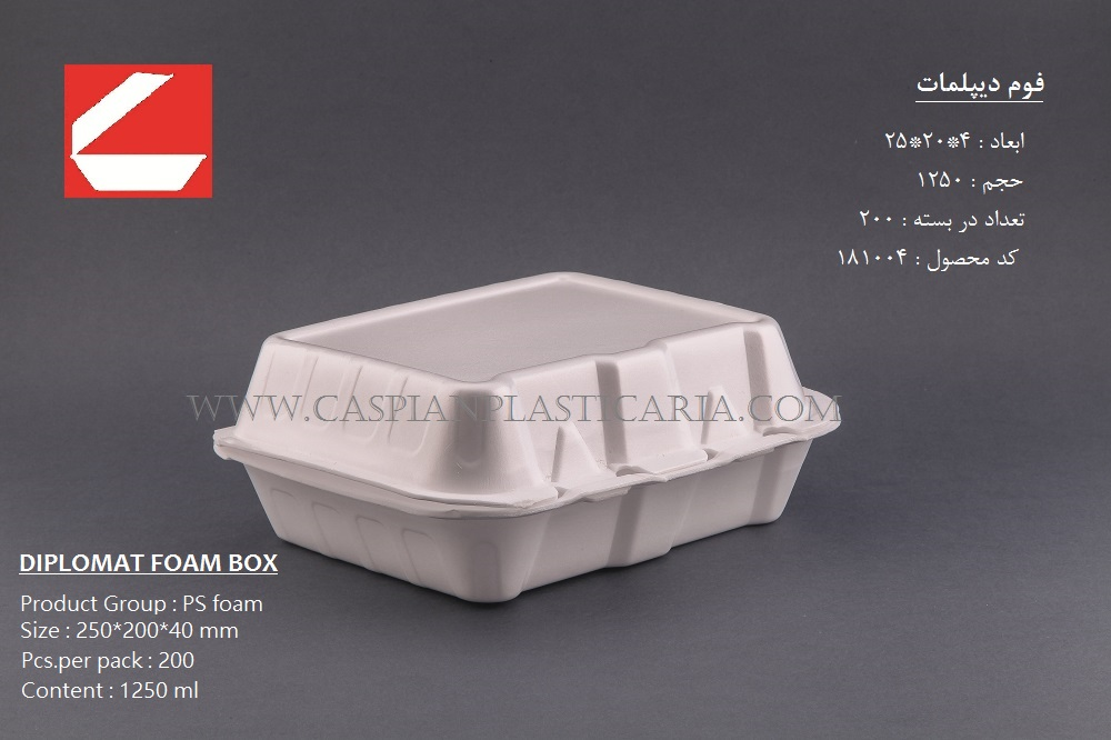 FOAM LUNCH BOX -XLARGE-THREE COMPARTMENT